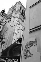 Ardif_1752 rue du Cloître Notre Dame Paris 04 (meuh1246) Tags: streetart paris ardif rueducloîtrenotredame paris04 gargouille