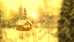 When you don't want that dream to stop.... (evakongshavn) Tags: winter winterwonderland winterwald dreaming dream amidreaming dreamy dreamscape snow hivernal hiver paysage landscape landschaft neige house goldenscape foret forest fairytaleforest enchanted enchantedfairytaleforest enchantedforest wald