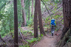 Big Sur edited pics-6 (MufasaPhoto) Tags: backpacking bigsur camping ocean redwoods thrive
