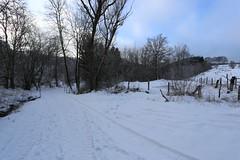 IMG_0214 (rudolf.brinkmoeller) Tags: eifel wandern natur eifelsteig