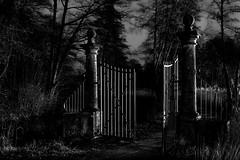 the gate... (st.weber71) Tags: nikon d850 sw blackandwhite art schwarzweis schlos burg dunklevisionen lzb langzeitbelichtung germany deutschland horror gruselig tore bäume nachts nachtfotografie gebäude nightlights extrem kälte nrw
