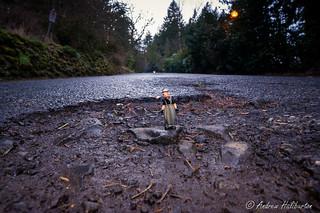 Pothole 5 – Potholes in the Park with Pelon