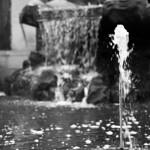 Dolphin fountain on Brühl's Terrace in Dresden thumbnail