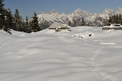 White(explore) (matteo.buriola) Tags: friuli prealpi bellunesi casera montelonga snow trekking landscape mountains paesaggio nikon d3100