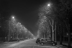 Misty night on Museum Avenue, Cardiff / Noson niwlog ym Mharc Cathays, Caerdydd (Dai Lygad) Tags: winter hiver gaeaf cardiff caerdydd cathayspark museumavenue cold nighttime january 2018 flickr canon 80d eos camera jeremysegrott wales uk roads trees geotagged misty frosty lights images photos photographs pictures photography stock noiretblanc blackandwhite bandw bw paysdegalles urban weather cymru southwales evening forwebsite forwebpage forpowerpoint forpresentation royaltyfree ccsearch creativecommons attributionlicense attributionlicence freetouse dark britain dailygad british forblog