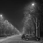 Misty night on Museum Avenue, Cardiff / Noson niwlog ym Mharc Cathays, Caerdydd thumbnail