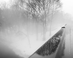 Thaw and Fog (mgstanton) Tags: framingham fog weather snow thaw blackandwhite bw