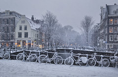 Amsterdam the city of bikes in the winter (B℮n) Tags: bike snow covered bikes bicycle holland netherlands canals winter cold street anne dutch people scooter gezellig cafés snowy snowfall atmosphere colorful walk walking cozy light corner water canal weather cool sunset file celcius mokum pakhuis grachtengordel unesco world heritage sled sleding slee seagull nowandthen meeuw seagulls meeuwen bycicle 1°c sun shadows sneeuw brug slippery glad flakes handheld wind code rood amsterdam umbrella colors keizersgracht café brandon 50faves topf50 100faves topf100