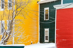 Backyards (Karen_Chappell) Tags: stjohns city downtown jellybeanrow colourful multicoloured bright snow winter windows green red yellow house houses home homes urban paint painted wood wooden canada newfoundland nfld tree colours colour color atlanticcanada avalonpeninsula white
