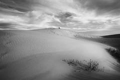 Dunas bajo las nubes (jantoniojess) Tags: dunas duna dunasenbolonia dune desierto nubes cloud blancoynegro blackandwhite monocromático cádiz andalucía españa spain soledad arena sand bolonia sanctipetri playadesanctipetri