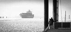 My Ship will come (Beppe Rijs) Tags: deutschland hamburg germany elbe river fluss water wasser hafen harbor port ankunft arrival winter schwarz schwarzweiss weis bw blackandwhite black white teufelsbrück