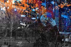 begum_doubleexpojpg (Elif Mercan) Tags: doubleexposure doubleexposurephotography doubleexposurephoto doubleexp doubleexpo orange cyan red blue skyblue black botanical botanic flower posture