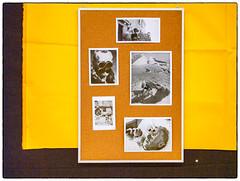 Akershus Gjendiktet #3 (Krogen) Tags: norge norway norwegen akershus romerike ullensaker ullensakerkunstforening kunstutstilling krogen panasoniclumixdmclx3