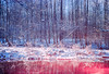 The River Ruby (Hayden_Williams) Tags: doubleexposure multipleexposure dream dreamy dreaming ruby redwater rubywater lake river stream creek nature natural trees tree sunset sun sunlight sunny morning colorful winter cold freeze freezing snow snowing snowy