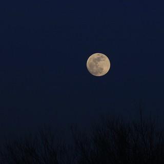 Super Moon, Blue Moon...