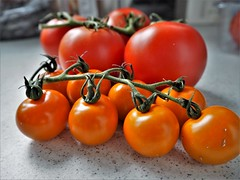 Ripe Tomatoes. (ManOfYorkshire) Tags: fruit vegetable vione ripe ripened morocco kent uk england gb thanetearth grown country tesco variety varieties pitenza royalstar orangerapture kitchen food side