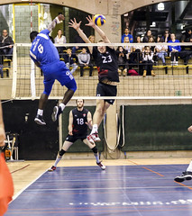 In the CLouds (Danny VB) Tags: carabins volleyball uqam udem indoor cepsum umontreal usports university université montreal quebec canada sport blue bleus laforcedelamontagne allezlesbleus touscarabins usport dannyboy photo action photography canon 6d canon6d