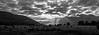 Lake Matheson Sunrise (alasdair.matthews) Tags: nz newzealand nikon nikond810 sunrise colour color landscape lake water matheson fox foxglacier sun mist reflection