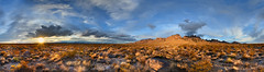 Chihuahuan Desert Sunset (BongoInc) Tags: newmexico chihuahuandesert lascruces panorama desertlandscape organmountains
