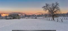 Potečská humna (jirka.zapalka) Tags: krajina landscape winter snow morning czech trees potec hills