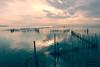 Albufera (CesarValientePhotography) Tags: atardecer albufera valencia canon 700d tokina 1116 sunset paisaje landscape