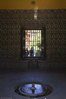 A doubt behind the window - Una duda tras la ventana