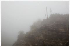 Coronado National Forest #8 2018; In the Clouds (hamsiksa) Tags: weather clouds fog cloudsonthemountains arizona tucson pimacounty santacatalinamountains coronadonationalforest skyislands sonorandesert plants flora desertplants cacti cactus saguaros cactaceae carnegieagigantea canyons