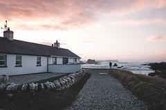 Ballintoy, Ireland (Sunny Herzinger) Tags: fujixpro2 northernireland xf1655mm travel february coast ballintoy ireland sea unitedkingdom gb