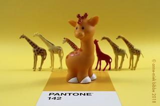 PANTONE 142