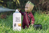 Groot Helping with the Shoot (jezbags) Tags: groot helping shoot macro macrophotography macrodreams canon canon80d 80d marvel marvelstudios guardians guardiansofthegalaxy babygroot atmosphere aerosol spray hottoys sideshow actionfigure figure toy toys