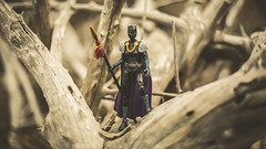 You don't belong here. (3rd-Rate Photography) Tags: shuri blackpanther marvel marvellegends superhero toy toyphotography actionfigure canon 50mm 5dmarkiii jacksonville florida 3rdratephotography 365 earlware wakanda