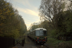 Country Park Halt (andrewfarmer1) Tags: severnvalleyrailway railway dmu diesel countryparkhalt severnvalley train trains winter november trees country