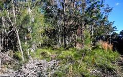 15 Waropara Road, Wyee NSW