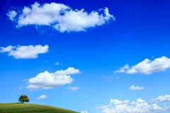 Val d'Orcia, Italy (gstads) Tags: valdorcia lecrete tuscany toscane italy italia cretesenesi landscape tree sky clouds paese arbre albero lonely lonesome solitude solitudine sixfeetunder paesaggio minimal minimalist minimalistic minimalism nature hill hills cloud blue green ngc