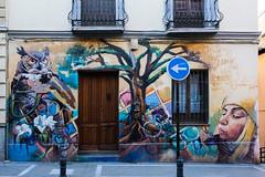 Downtown Granada (Marian Pollock) Tags: spain europe granada mural graffiti street facade windows door owl bubbles tree girl painting