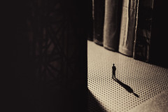 The Archivist by shaplov -