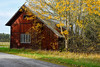 Småland - Nikon D810 (magnus.joensson) Tags: sweden swedish småland barn nikon d810 zeiss otus 55mm autumn color