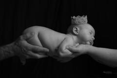 Lucía (Miguel Lorenzo Fotografía) Tags: reciénnacido newborn newbornphotography bebé baby nikond810 profotob1x nikkor2470 manos corona clavebaja blackandwhite blancoynegro paternidad maternidad mamá papá