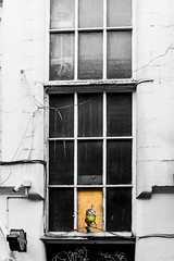 7 eyed Jake in the window long view (PDKImages) Tags: streetart manchesterstreetart posterart windows pasteup manchester city urban art graffiti colours walls