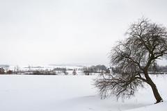 Winterland (berndtolksdorf1) Tags: deutschland thüringen triptis jahreszeit winter schnee landschaft landscape outdoor