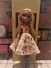 Nina Swing (gavinpippin1) Tags: ever after high nina thumbell thumbellina swing dress doll sewing