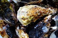 DSC00014 (muzina_shanghai) Tags: 牡蠣 蒸し牡蠣 oyster