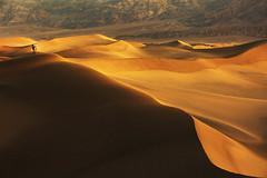 the edge (Andy Kennelly) Tags: death valley edge sand dunes eureka sunrise curves light shadows photographer