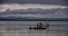 Go With The Flow (Mr_Pudd) Tags: canoeing canoe winter welshmountains mountains mountain snow february dovey dyfi nikon nikond750 rowing wales grey cloud aberdyfi aberdovey outwardbound boat