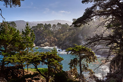 View from above (N. SHA) Tags: nikond750 nikon35mmf18ged statepark pointlobos landscape fx california