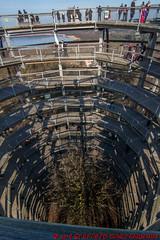 """Aussichtsturm """"Adlerhorst"""" vom Baumwipfelweg (Stefan's Gartenbahn) Tags: baumwipfelweg aussichtsturm adlerhorst rügen prora naturerbe ostseebad binz natur architektur outdoor buchenwald holz himmel wald"""