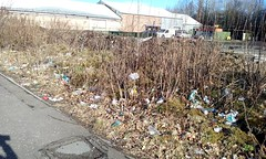 Kirkintilloch . . . Litter Capital of Scotland? (Paris-Roubaix) Tags: kirkintilloch litter problem east dunbartonshire birdston road rubbish