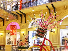 Chinese New Year 2018 celebrating at GUM, Moscow (Aram Bagdasaryan) Tags: newyear 2018 chinese decoration indoor moscow russia gum гум bicycle flowers sigmaaf24105mmf4dgoshsmart