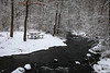 samsebeskazal-2237.jpg (samsebeskazal) Tags: winter newjersey ringwood