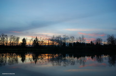 Sunset (JSB PHOTOGRAPHS) Tags: dsc162200001 sunset pond eugeneoregon nikon d1 1755mm recreation reflections reflection trees sky treeline clouds autzenstadium altonbakerpark
